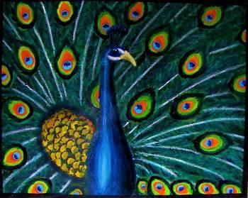 Peacock Oil Pastel  Acrylic on 16X20 Canvas by sebastiantpierre