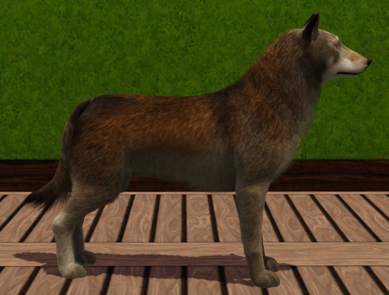 Mod The Sims  Wolves for your Sims