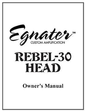 Egnater Rebel-30 Mark II