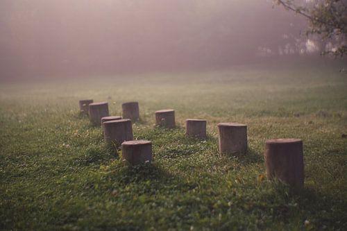 In de mist nog verlaten