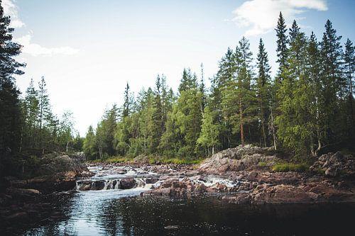 Het schilderachtige landschap van Zweden met waterval