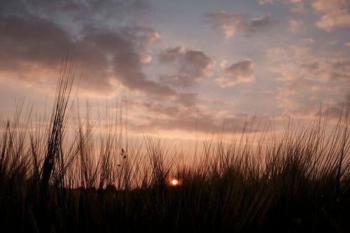 zonsondergang boven westerbork