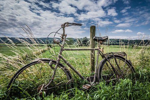 Verdronken fiets in de polder