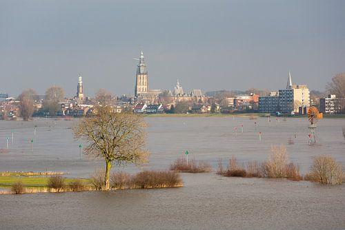 Ondergelopen uiterwaard van Zutphen