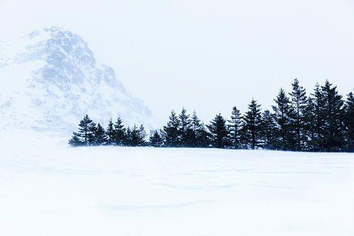 Sneeuwlandschap op Lofoten