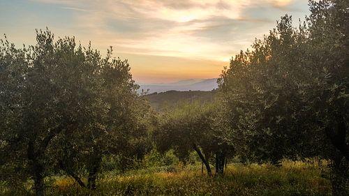 Toscane - Italie Zonsondergang