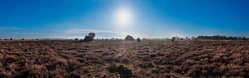 Strabrechtse Heide - Panorama