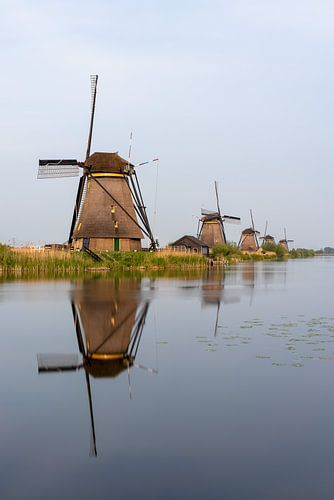 Windmolens in Kinderdijk