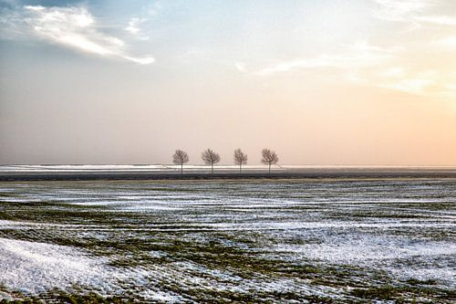 Polderlandschap in winter