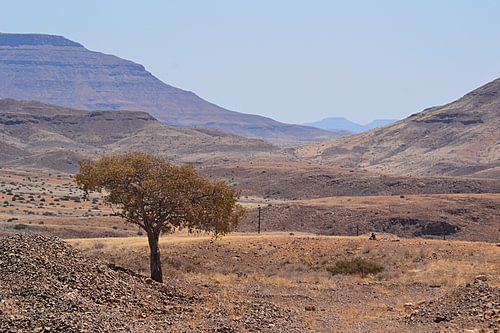In the middle of nowhere in Namibië