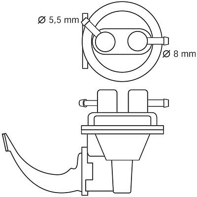 Bosch Electrical Fuel Pump With Strainer, Bosch, Free