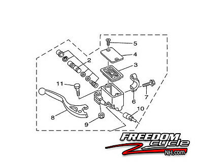 Raptor 660 Wiring Harness, Raptor, Free Engine Image For