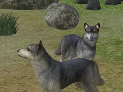 Mod The Sims Member: calinours