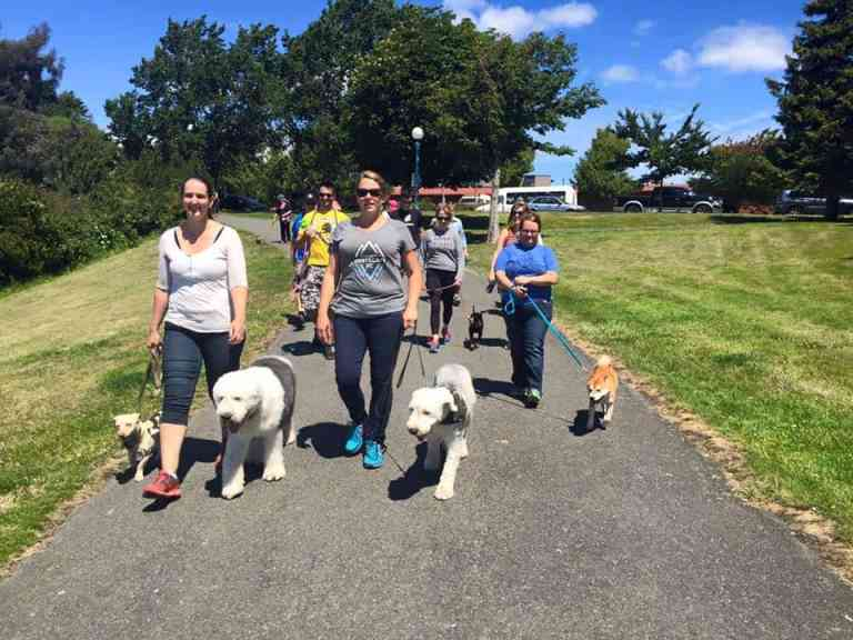 Thumbs Up Community Dog Walks