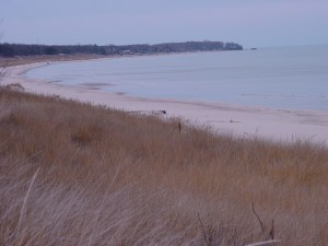 Port Cresent State Park Beach South