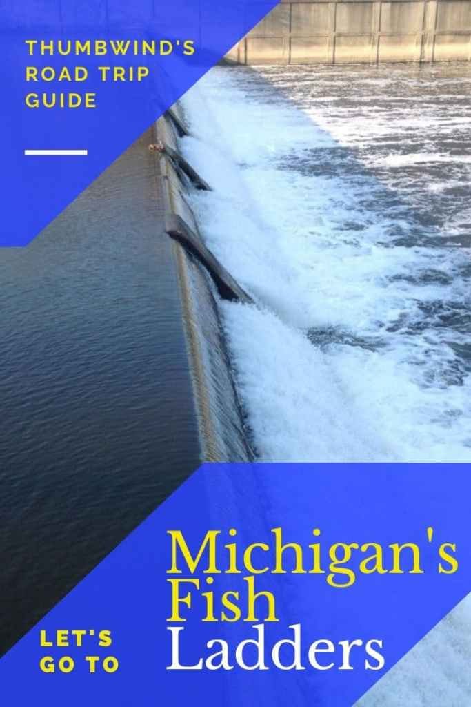 Fish Ladders in Michigan