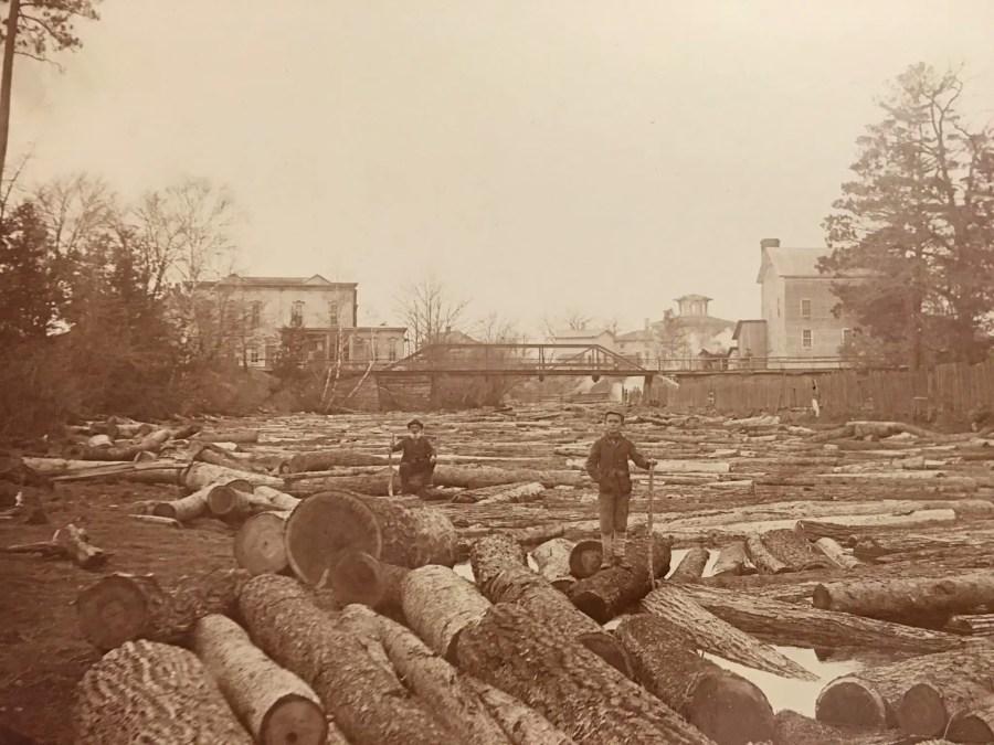 Lumbering in Caseville
