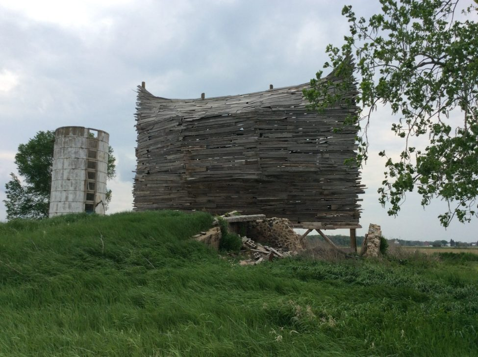 Emergency-Ark-Barn-Art-Profile
