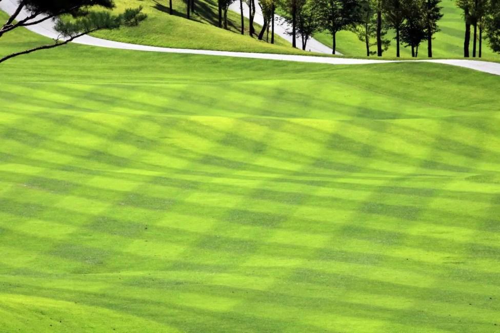 Golf Century Oaks