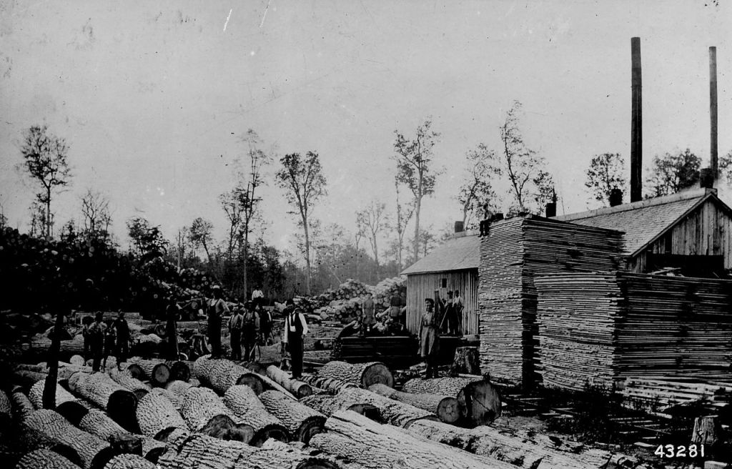 Michigan Sawmill from the 1850s