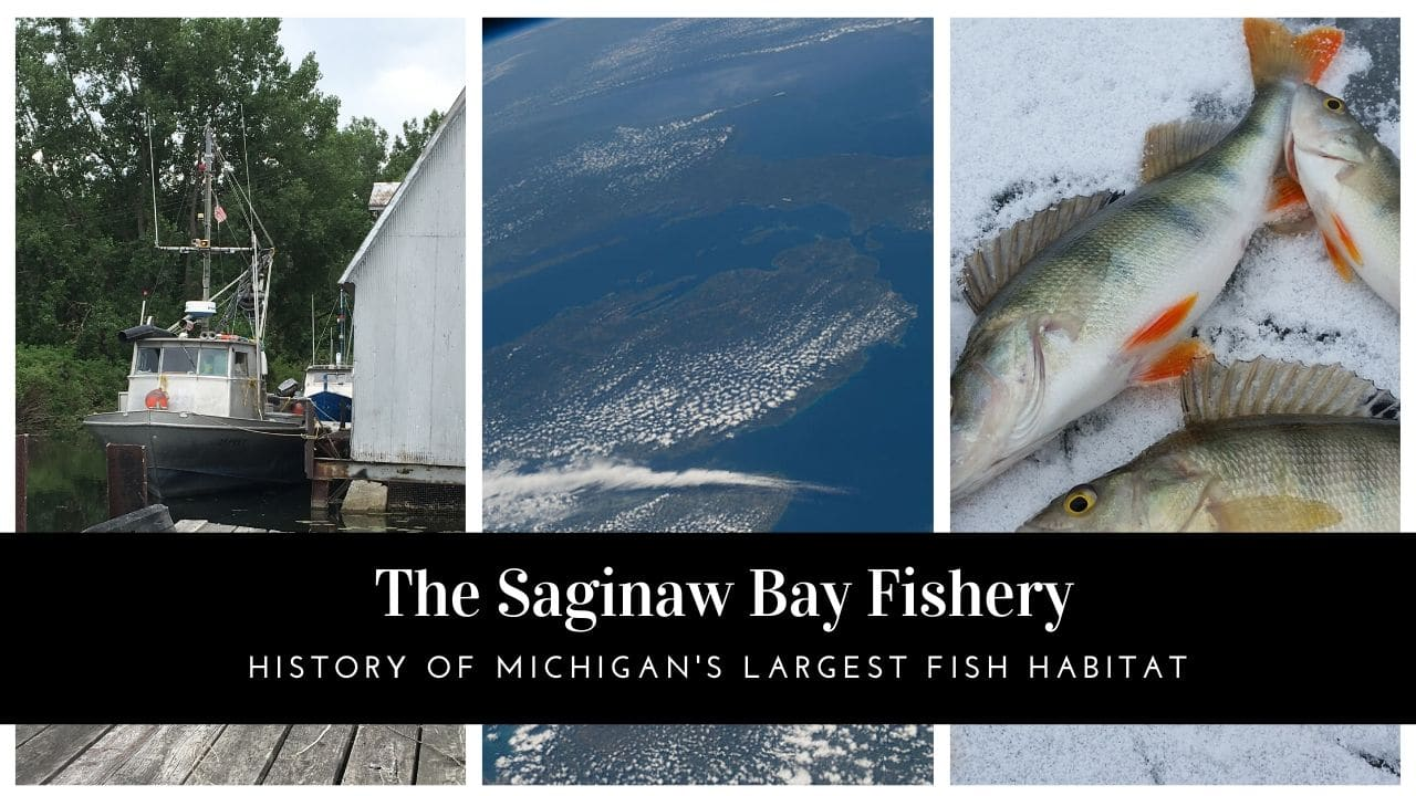 Saginaw Bay Fishery