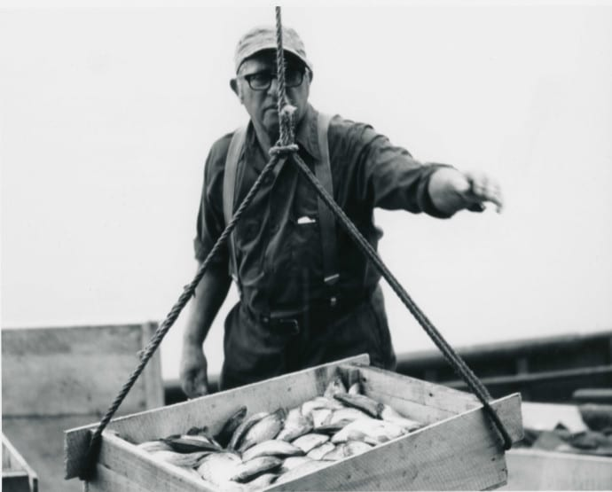 Bay Port Fisherman