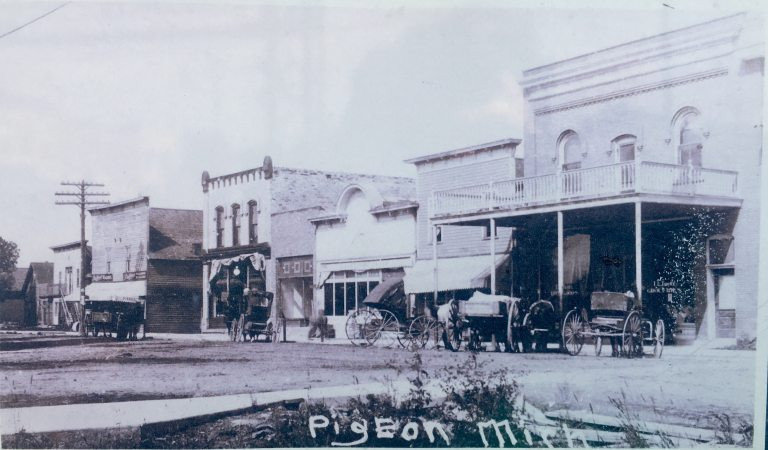 Pigeon Michigan 1800s