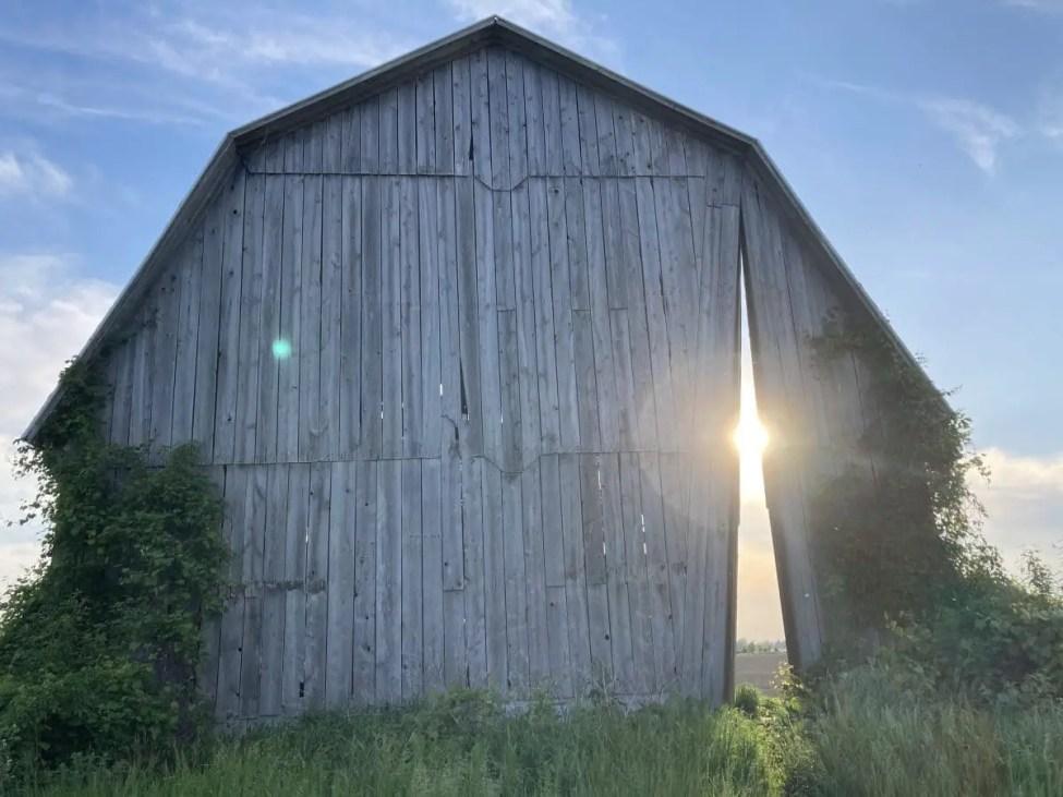 Secret Sky Spring Light