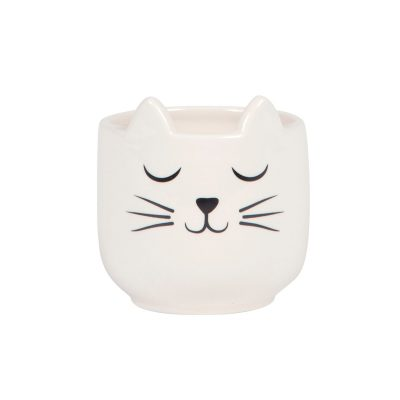 Sass & Belle - Cat's Whiskers Mini Planter