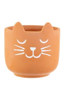 Sass & Belle - Terracotta Cat's Whiskers Mini Planter