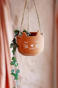 Sass & Belle - Terracotta Cat's Whiskers Hanging Planter