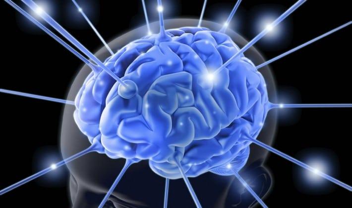 Celastrol (From Thunder God Vine) as a Treatment for Parkinson's Disease?