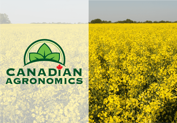 Our Work - Canadian Agronomics
