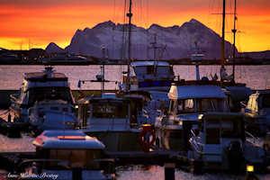 the harbor in bodo norway