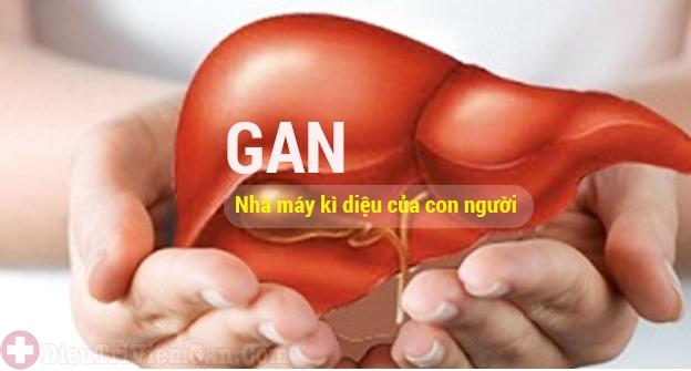Gan là nhà máy kì của con người