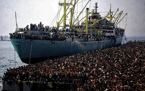 tramp steamer refugees 22