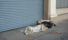 A Place to Sleep - 2 - m