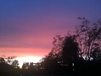 Sunset seen from Berkeley CA 11-7-2016