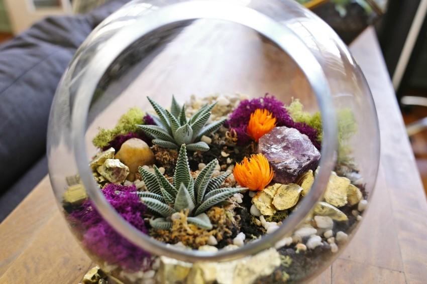 arranjo suculenta vidro
