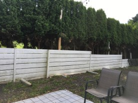 Fence partially removed and used for garden boxes