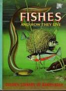 Golden Book of Knowledge_Fishes