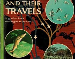 golden-book-of-knowledge_-animals-and-their-travels-1