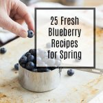 25 Fresh Blueberry Recipes for Spring