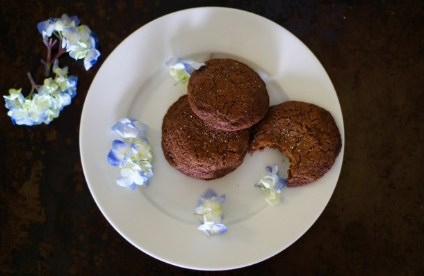 Gluten Free Molasses Cookies