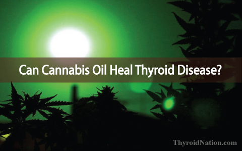 Cannabis Oil Healed This Woman's Inoperable Mass And Thyroid Disease