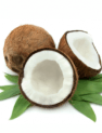 coconut-products-to-heal-leaky-gut-230x300