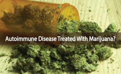 Medical-Marijuana-Can-Help-Heal-Autoimmune-Diseases