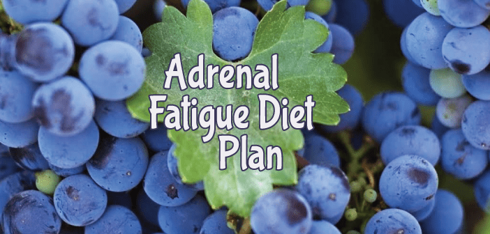 What-Does-An-Adrenal-Fatigue-Diet-Look-Like