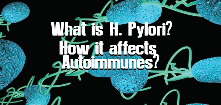 What-Is-H.-Pylori-Why-Are-Autoimmunes-Susceptible