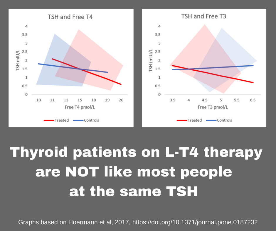 Image Thyroid Patients On L T4 Therapy Thyroid Patients Canada